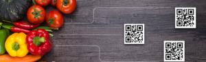 food verification